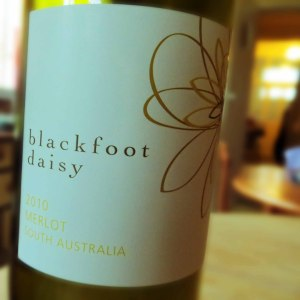 Blackfoot Daisy Wine
